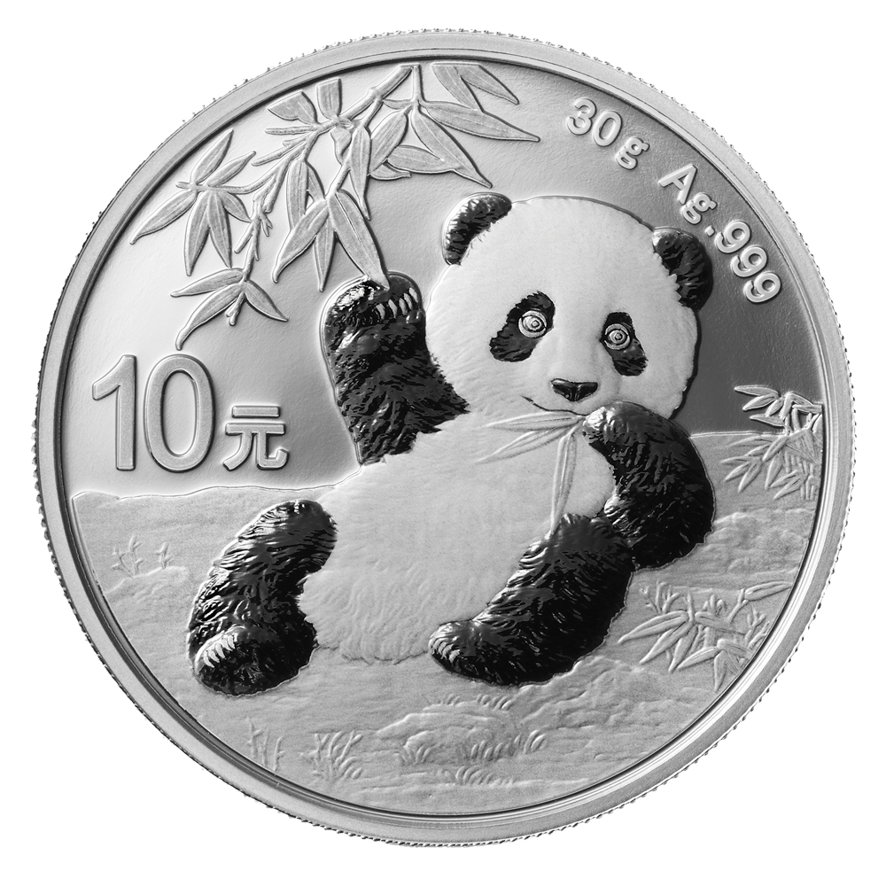 2020 30 Gram Chinese Panda Silver Coin