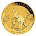 2020 1/2oz Gold Kangaroo Coin | Perth Mint