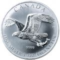 Canadian Eagle Silver Coin